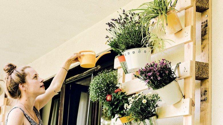 Einfach gestapelt: So geht Pflanzenvielfalt auch auf dem Balkon.